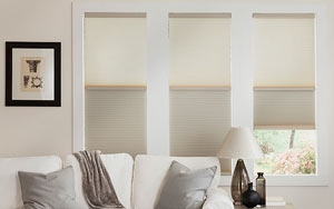 Viewscape Honeycomb Blinds