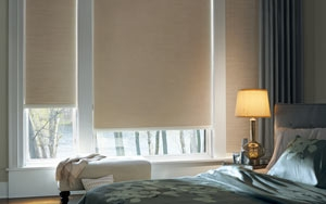 Viewscape Roller Blinds