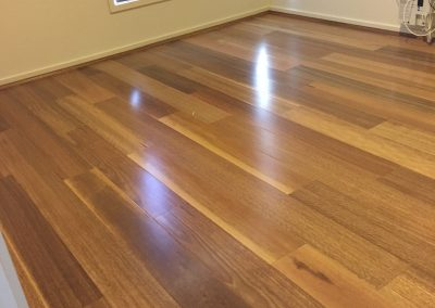 Herford Wholesale HM Walk Spotted Gum